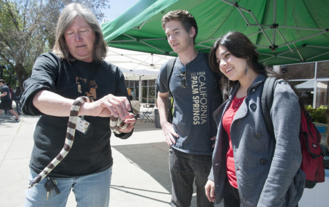 Earth Day celebration offers solutions to environmental problems