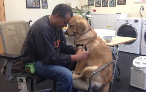 PTSD vets and their life-saving pets