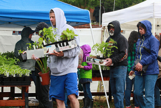 Guests of the spring fling beat the rain to get plants for their home gardens on April 9 at Rodgers Ranch in Pleasant hill, Ca.