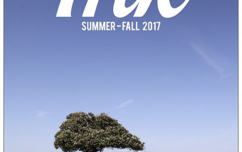 Ink – Summer and Fall 2017