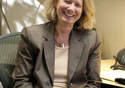 Susan Lamb named new president of DVC