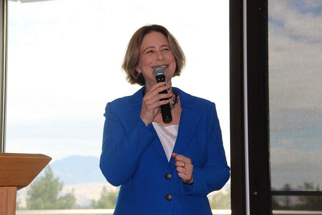 Susan Lamb Presidential DVC Candidate Nov. 15 2017