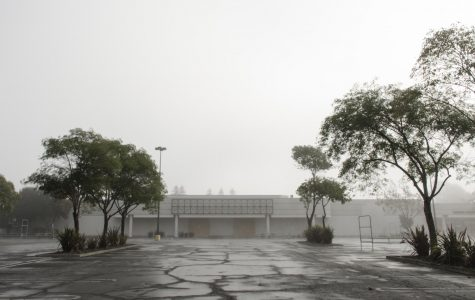 Suburban gothic: the life and death of shopping malls