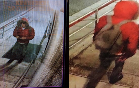 Potential graffiti suspect caught on camera
